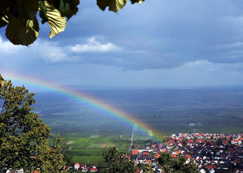Pf‰lzer Wald - Elsass - Schwarzwald - Tour vom 15. bis 21. August 2014 mit Auf Tour Motorradreisen unterwegs mit Achim.NUR ZUR PRIVATEN VERWENDUNG.